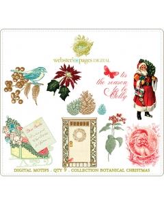 Botanical Christmas Designs Digi Motifs