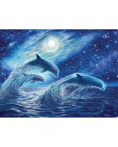 Ocean Dreamers