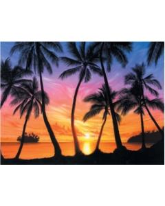 Palm Beach Sundown