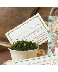 the SPRING AIR Petite Paper Set