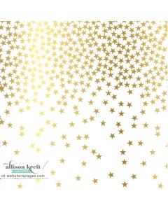 12x12 Vellum Gold Stars