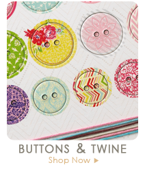 Webster's Pages Button & Twine