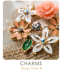 Webster's Pages Charms